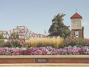 Downtown Peoria in full bloom.